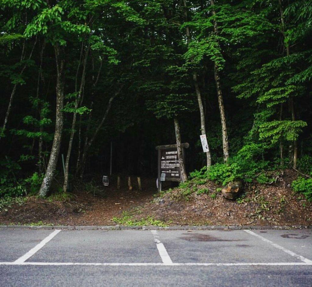 Bosques más grandes Aokigahara