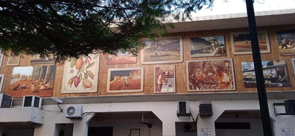 Galería fotográfica del proceso de cacao en Guayaquil